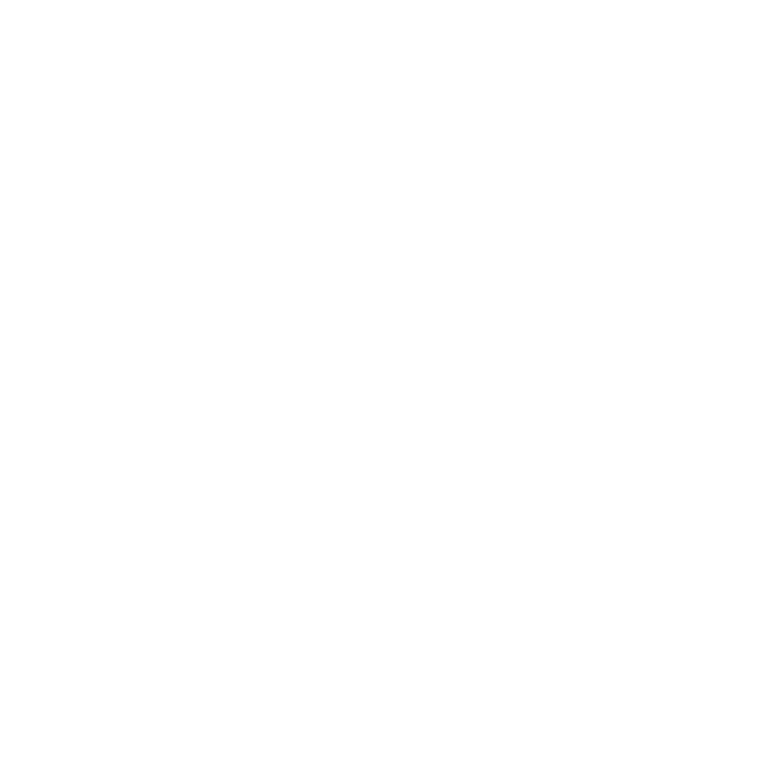 Digital Bros logo